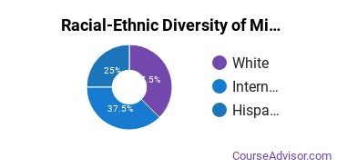 Racial-Ethnic Diversity of Military Systems Graduate Certificate Students