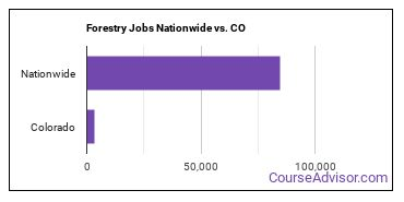 Forestry Jobs Nationwide vs. CO