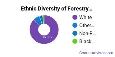 Forestry Majors in MI Ethnic Diversity Statistics