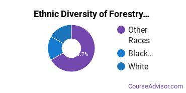 Forestry Majors in OK Ethnic Diversity Statistics