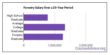 forestry salary compared to typical high school and college graduates over a 20 year period