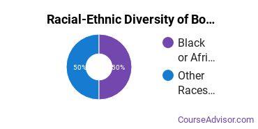 Racial-Ethnic Diversity of Boilermaking Undergraduate Certificate Students