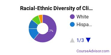 Racial-Ethnic Diversity of Clinical Psychology Doctor's Degree Students
