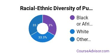 Racial-Ethnic Diversity of Public Policy Associate's Degree Students