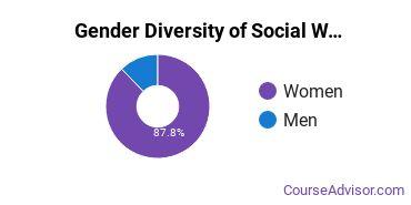 Social Work Majors in AZ Gender Diversity Statistics