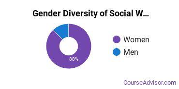 Social Work Majors in PA Gender Diversity Statistics