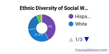 Social Work Majors in TX Ethnic Diversity Statistics