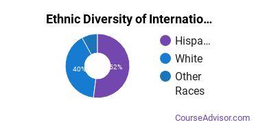 International Relations & Security Majors in NM Ethnic Diversity Statistics