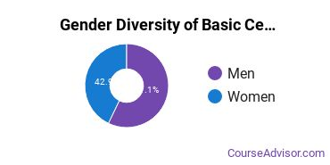 Gender Diversity of Basic Certificates in Urban Studies