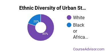 Urban Studies Majors in NE Ethnic Diversity Statistics