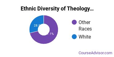Theological & Ministerial Studies Majors in ME Ethnic Diversity Statistics