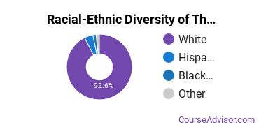 Racial-Ethnic Diversity of Theology Undergraduate Certificate Students