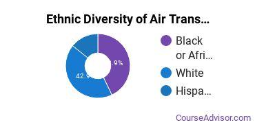 Air Transportation Majors in DE Ethnic Diversity Statistics