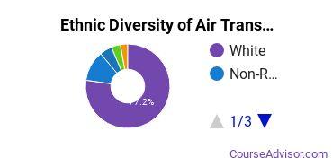 Air Transportation Majors in IN Ethnic Diversity Statistics