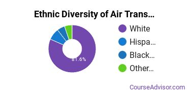 Air Transportation Majors in MT Ethnic Diversity Statistics