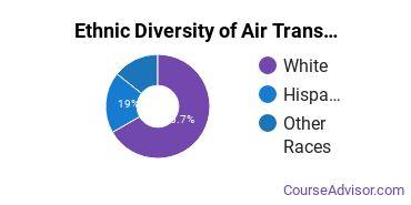 Air Transportation Majors in NJ Ethnic Diversity Statistics