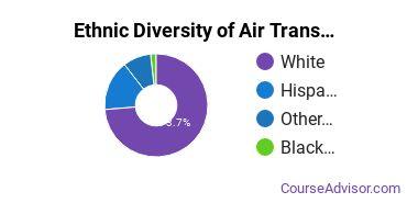 Air Transportation Majors in NM Ethnic Diversity Statistics