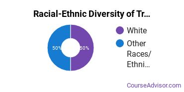 Racial-Ethnic Diversity of Transportation Students with Bachelor's Degrees