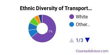 Transportation & Materials Moving Majors Ethnic Diversity Statistics