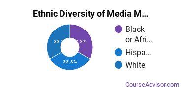 Arts & Media Management Majors in DE Ethnic Diversity Statistics