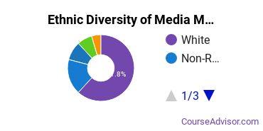 Arts & Media Management Majors in IN Ethnic Diversity Statistics