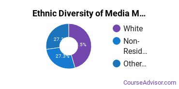 Arts & Media Management Majors in MD Ethnic Diversity Statistics
