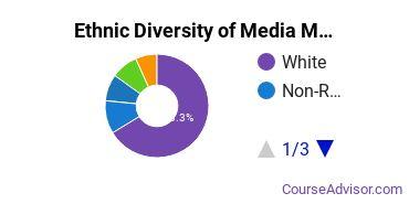 Arts & Media Management Majors in PA Ethnic Diversity Statistics