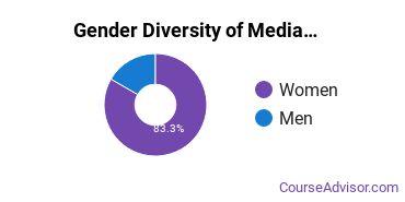 Arts & Media Management Majors in UT Gender Diversity Statistics