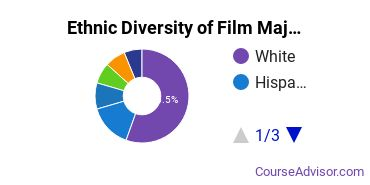 Film, Video & Photographic Arts Majors Ethnic Diversity Statistics