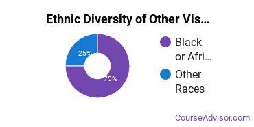 Other Visual Art Majors in DE Ethnic Diversity Statistics