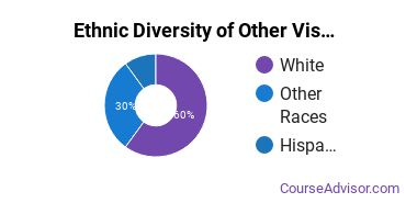 Other Visual Art Majors in OR Ethnic Diversity Statistics